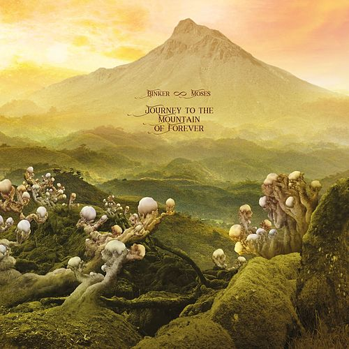 Echoes from the Other Side of the Mountain by Binker And Moses