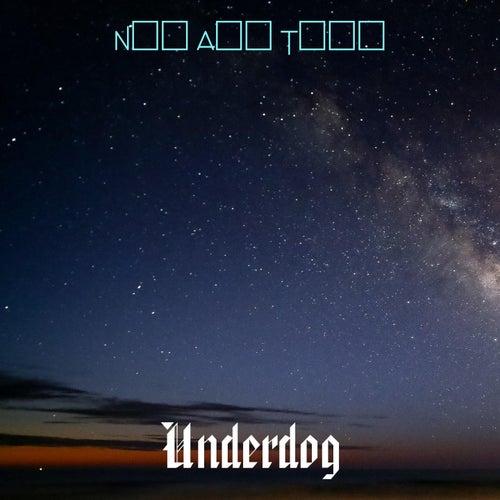 Now And Then von Underdog