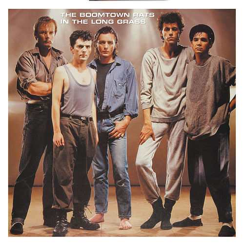 In The Long Grass by The Boomtown Rats
