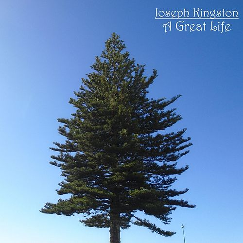 A Great Life de Joseph Kingston