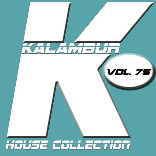 Kalambur House Collection Vol. 75 de Dandy