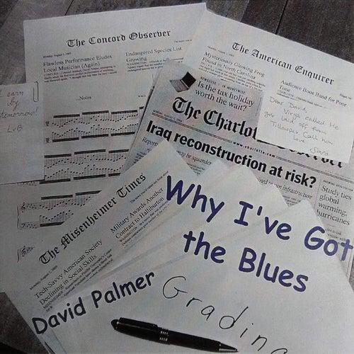 Why I've Got the Blues by David Palmer