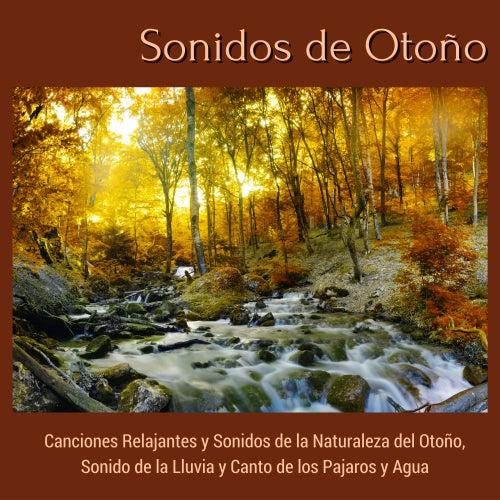 Sonidos de Otoño - Canciones Relajantes y Sonidos de la Naturaleza del Otoño, Sonido de la Lluvia y Canto de los Pajaros y Agua von El Alma