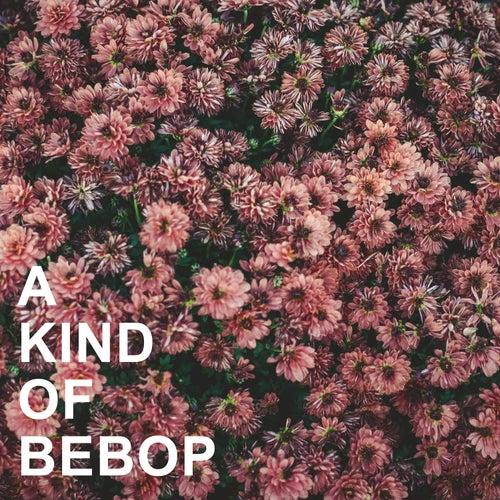 A Kind of Bebop von Various Artists