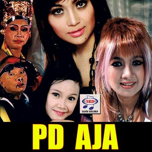 PD Aja de Various Artists