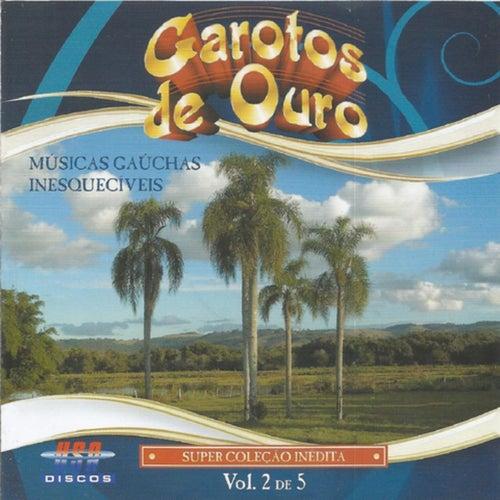 Músicas Gaúchas Inesquecíveis, Vol. 2 de Garotos de Ouro
