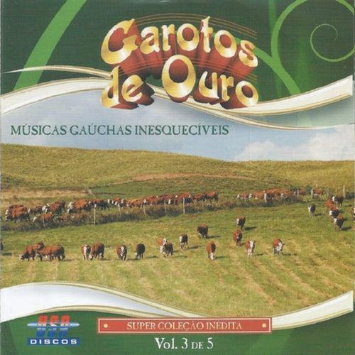 Músicas Gaúchas Inesquecíveis  Vol. 3 de Garotos de Ouro