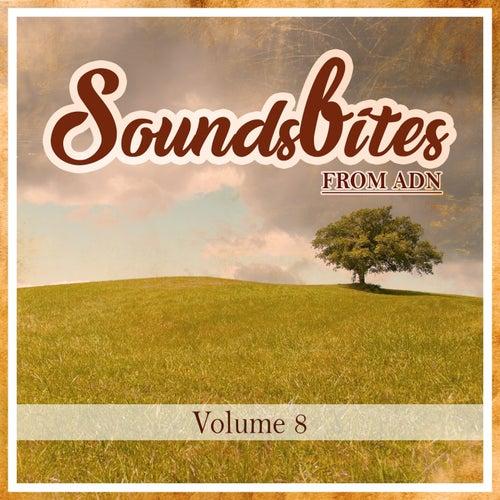 Soundsbites from ADN, Vol. 8 de Various Artists