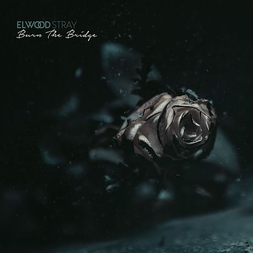Burn the Bridge von Elwood Stray