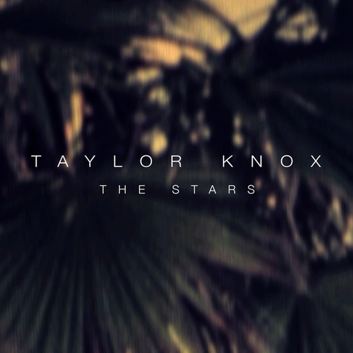The Stars by Taylor Knox