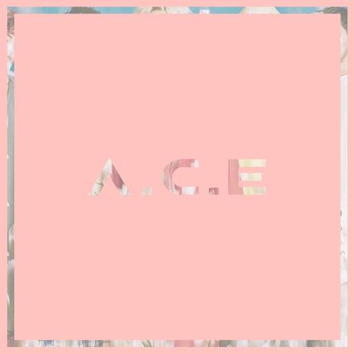 Cactus de A.C.E (1)