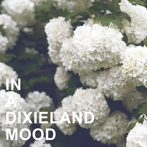 In a Dixieland Mood von Various Artists
