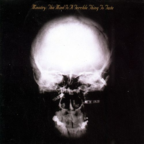 The Mind Is A Terrible Thing To Taste by Ministry