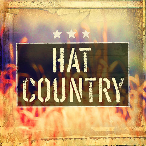 Hat Country von Various Artists