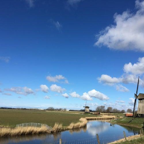 Nederland Rood Wit En Blauw by Ed Palermo