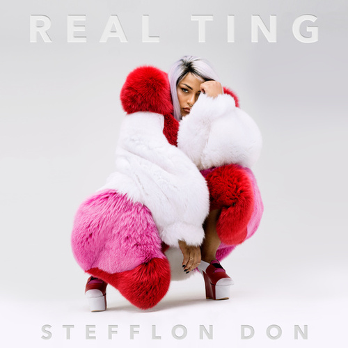Envy Us by Stefflon Don