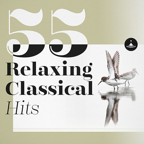 55 Relaxing Classical Hits von Various Artists