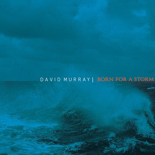 Born for a Storm by David Murray