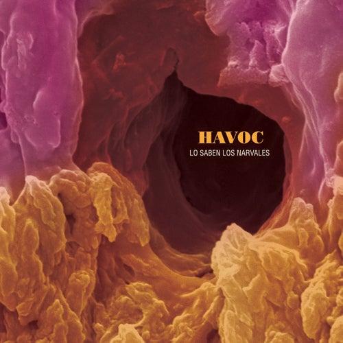 Lo Saben los Narvales de Havoc