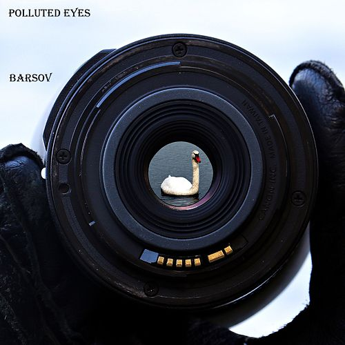 Polluted Eyes by Barsov