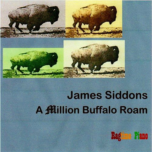 A Million Buffalo Roam de James Siddons