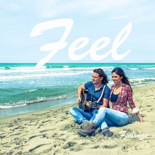 Feelings van Feel