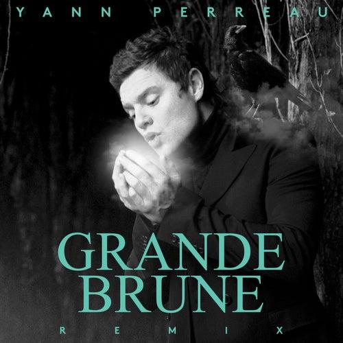 Grande brune (Remix) by Yann Perreau