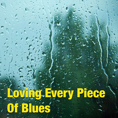 Loving Every Piece Of Blues de Various Artists