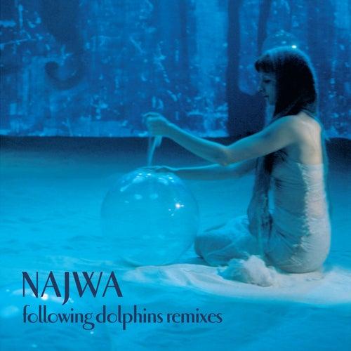 Following Dolphins Remixes de Najwa