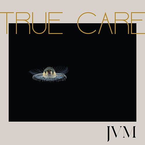 True Care de James Vincent McMorrow