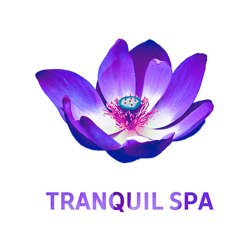 Tranquil Spa – Pure Relaxation, Sensual Massage, Relaxing Therapy for Body, Stress Relief, Spa Music, Relaxation Wellness, Nature Sounds de Massage Tribe