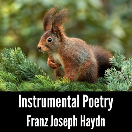 Instrumental Poetry: Franz Joseph Haydn by Franz Joseph Haydn