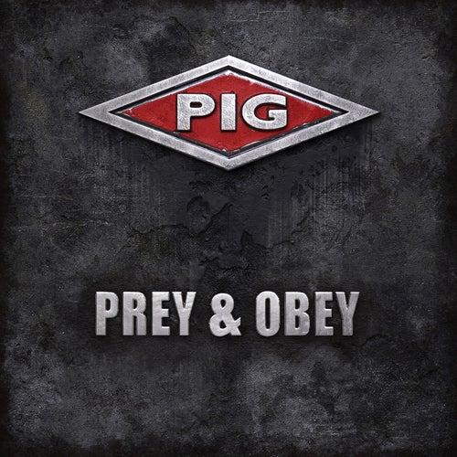 Prey & Obey by Pig
