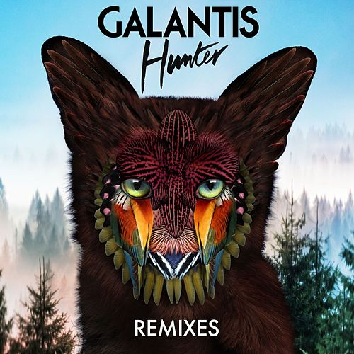 Hunter (Remixes) von Galantis