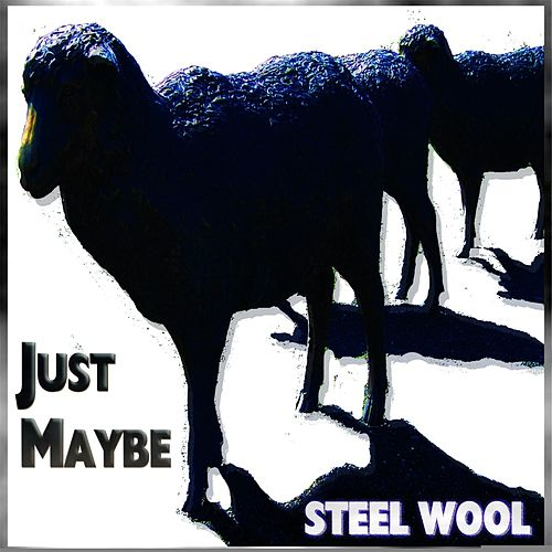Just Maybe by Steel Wool