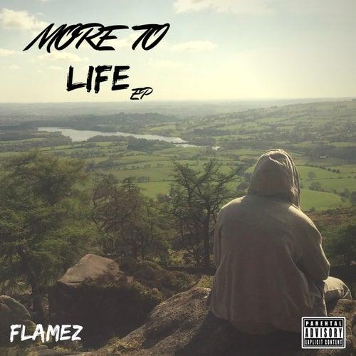 More to Life de Flamez