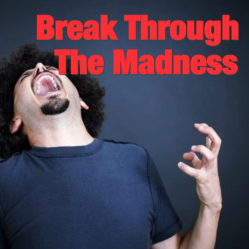 Break Through The Madness by Various Artists