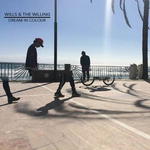 Dream in Colour de Wills & The Willing