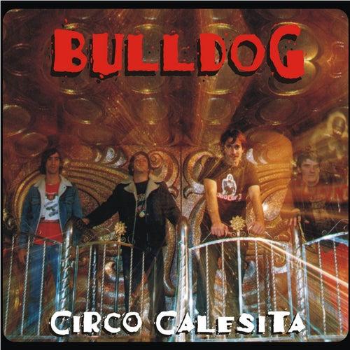 Circo Calesita de Bulldog
