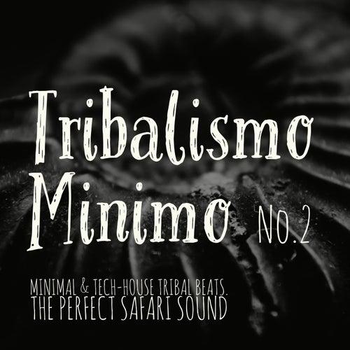 Tribalismo Minimo, Vol. 2 de Various Artists