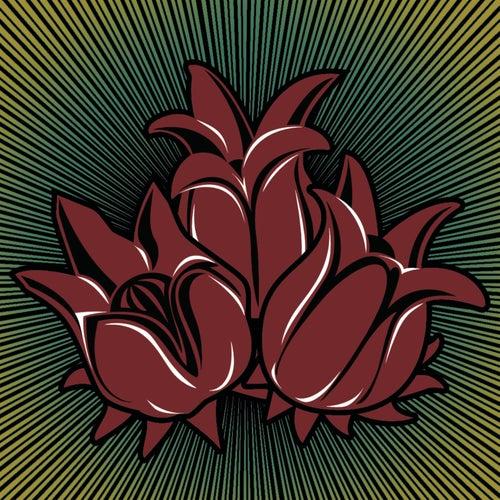 Três Lindas Flores by Luis Carlinhos