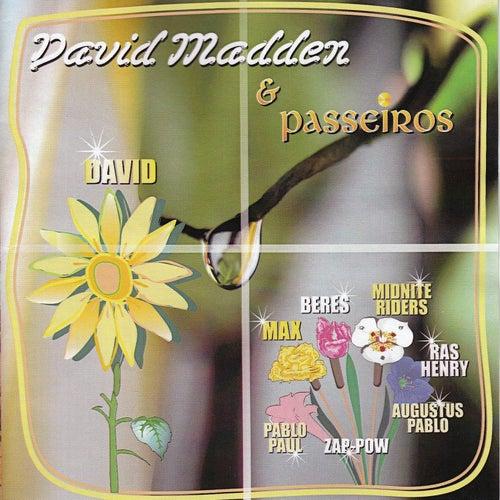 David Madden & Passeiros by Various Artists