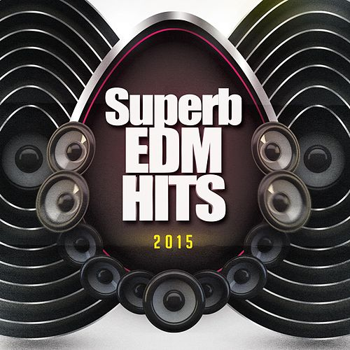 Superb EDM Hits 2015 de Various Artists