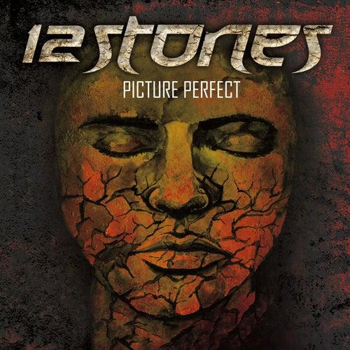 Picture Perfect - Single von 12 Stones