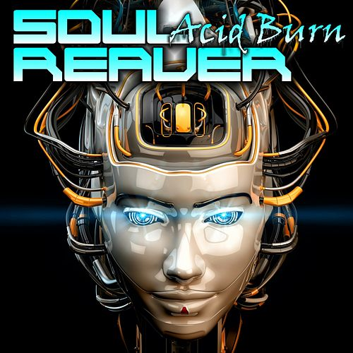 Acid Burn von SoulReaver