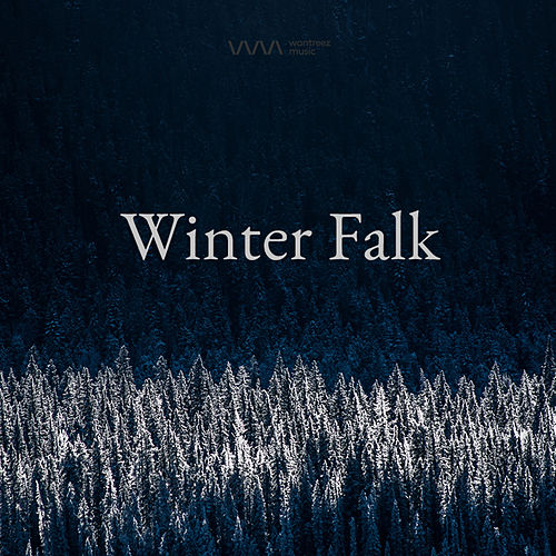 Winter Folk von Various Artists