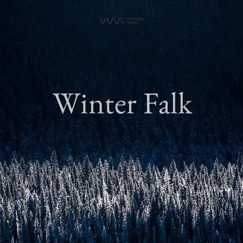 Winter Folk von Various Artists