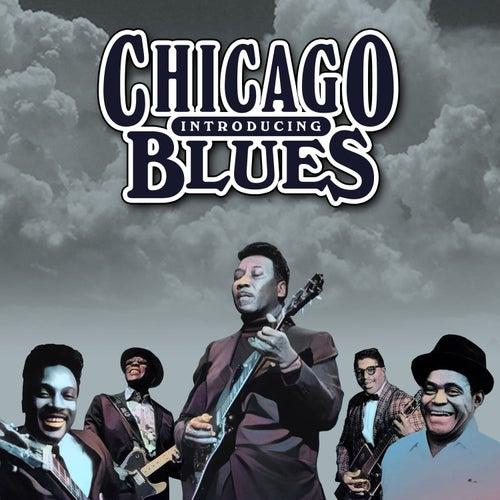 Introducing Chicago Blues de Various Artists