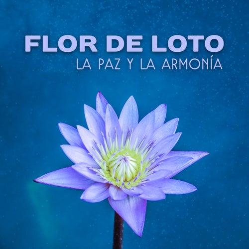Flor de Loto – La Paz y La Armonía, Antistres, Zen Música, Flor de La Mañana, Relajante de Meditación Música Ambiente