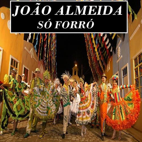 Só Forró de João Almeida